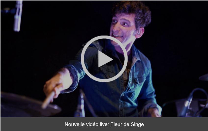 Jazz fusion - Rock progressif - 4dB - Live au Cirque Electrique - Fleur de Singe