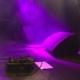 4db - jazz fusion - rock progressif - Résidence - Chapelle Argence - Troyes